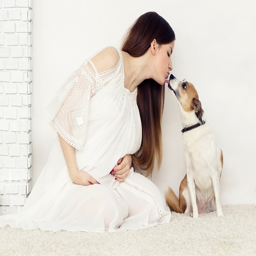pregnant women with dogs